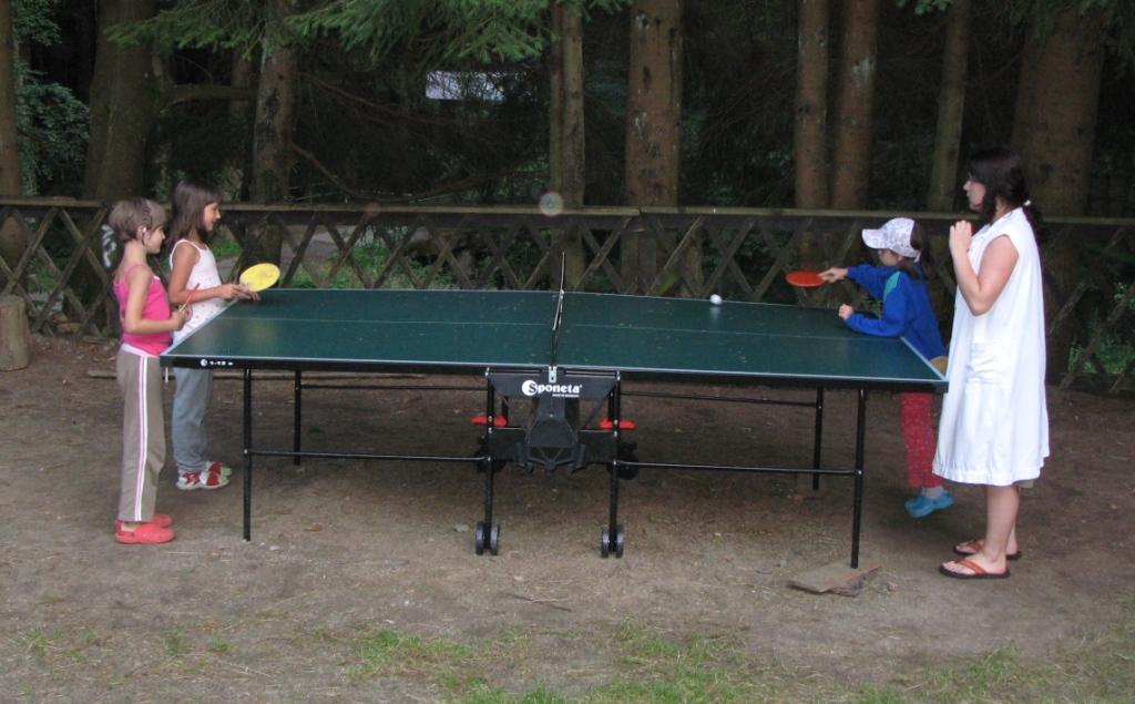 Ping_pong_06
