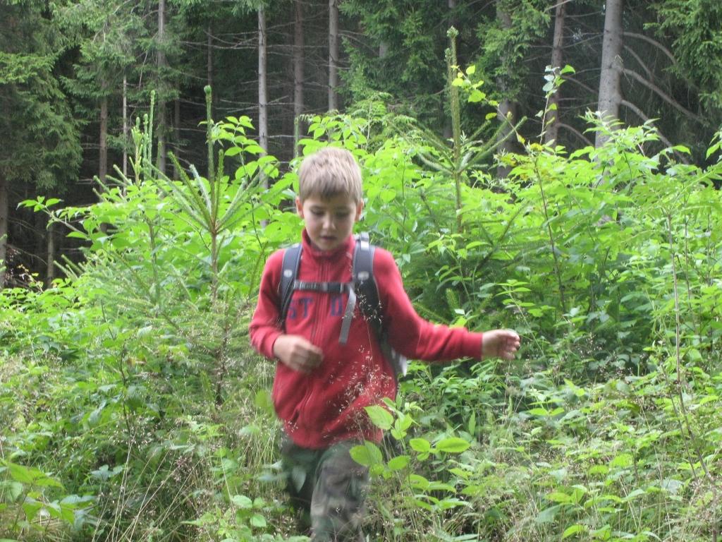 V_lese_na_vylete_07