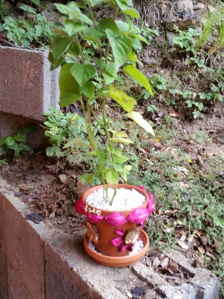 zahradnici_1